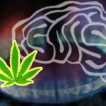 A THC megvédi az agyat a szén-monoxid mérgezéstől