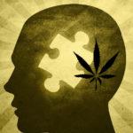 Tanulmány: A tudósok felfedezik a kapcsolatot a poszttraumatikus stressz és a kannabinoidok között