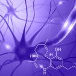 A CBD 'Hosszantartó védelmet' biztosít szklerózis multiplex ellen