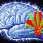 Kutatás: Kannabisz kivonat megállítja a rohamokat