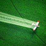 A CBD védelmet nyújthat a májnak egy elterjedt környezeti méreg ellen