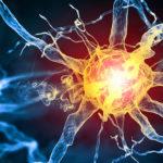 A kannabiszban található vegyületek megvédik az idegrendszert szklerózis multiplex esetén