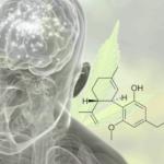 A kannabiszból készült gyógyszer kezelheti a skizofréniát