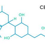 Kannabinoid profil: CBDV