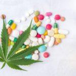 A kannabiszt használók 80%-a abbahagyja a gyógyszerek szedését