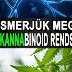 Az Endokannabinoid rendszer