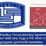 """Tanulmány: A THC ígéretes """"alternatív gyógyszer"""" gyomorrákra"""