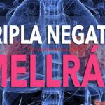 Tanulmányok: A kannabinoidok segítenek a tripla-negatív mellrák elleni harcban