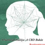 A Sarlatán Hálója: A CBD bukás