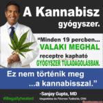 A kannabisz biztonságossabb és hatásosabb, mint a vényköteles gyógyszerek