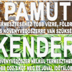 Pamut vagy Kender