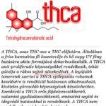 Kannabinoid profil: THCA