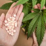 Az orvosi kannabisz 5 milliárd dollár éves kockázatot jelenthet a nagy gyógyszergyáraknak, a kutatások szerint