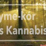 Kannabisz és Lyme-kór