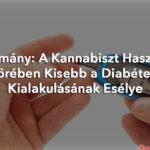 Tanulmány: A kannabiszt használók körében kisebb a diabétesz kialakulásának esélye