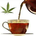Kannabisz tea – Tudomány és Tévhitek