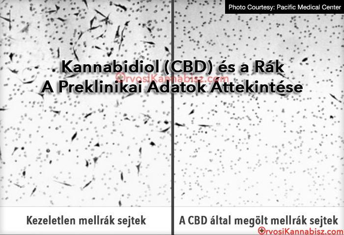 Szuper agresszív rák Hasnyálmirigyrák