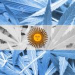 Egy argentin állam legalizálta a kannabisz olajat