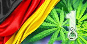 First-cultivation-permit-of-medicinal-cannabis-in-Germany2016