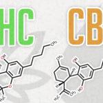 THC/CBD kombináció a mindennapi klinikai gyakorlatban szklerózis multiplex kezelésére