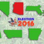 A választás napján hét amerikai állam legalizálta a kannabisz használatát