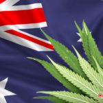 Ausztrália legalizálja az orvosi kannabisz termesztést