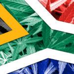 Győzött az orvosi kannabisz használat Dél-Afrikában