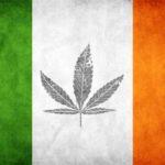 Írország: 77% támogatja az orvosi kannabiszt