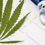 A bizonyítékok elsöprőek: A kannabisz kilépő szer a droghasználók számára, nem pedig kapu az újakhoz