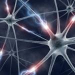 A CBD a GABA neuronokon keresztül hat, ami képes megmagyarázni antiepileptikus tulajdonságait