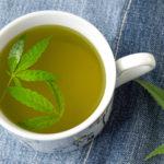 Tanulmány: A kannabisz tea hatásos krónikus fájdalom kezelésére