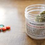 Felmérés: A betegek nagyrésze inkább orvosi kannabiszt használna opioidok helyett fájdalomcsillapításra