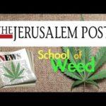 Az izraeli Ariel Egyetemen elindult az első orvosi kannabisszal kapcsolatos tudományos kurzus