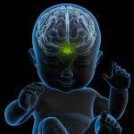 Endokannabinod jel diszreguláció az autizmus spektrum zavarokban: a gyulladásos állapot és a neuro-immunváltozások közötti összefüggés.