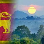 Sri Lanka exportálja az első ültetvényből származó kannabiszt