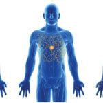Az orvosi kannabisz biohasznosulása – Melyek a leghatékonyabb fogyasztási módok?
