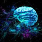 A fitokannabinoidok neurológiai előnyeinek áttekintése