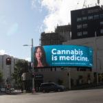 Az orvosi kannabiszt legalizáló államokban csökkent a kamaszok marihuána fogyasztása