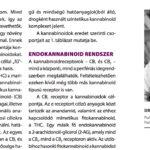 Dr. Andrássy Gábor – Kannabinoidok használatának lehetőségei a pszichiátriában
