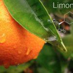 Terpén profil: Limonén