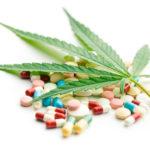 Tanulmány: A kannabisz használat csökkenti a tüneteket és a vényköteles gyógyszerek használatát szklerózis multiplex betegeknél