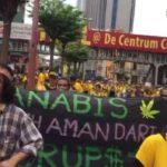 Orvosi kannabisz: A halálbüntetés arra ösztönzi Malajziát, hogy átgondolja a szigorú törvényeket