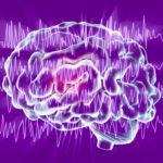Epilepszia és viselkedéstani vizsgálat: a krónikus betegségekben szenvedőknél aCBD segít az életminőség javításában