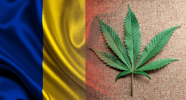 Törvényhozók a kannabisz gyógyászati felhasználását indítványozták Romániában | Magyar Orvosi Kannabisz Egyesület