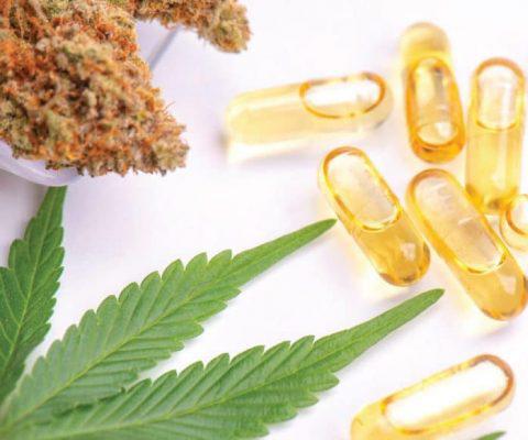 CBD és kannabisz adagolási útmutató   Magyar Orvosi Kannabisz Egyesület