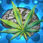 Kannabinoidok használata agydaganat esetén