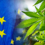 Az Új Élelmiszer CBD lesz az európai sztenderd