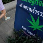 Thaiföld elkezdi leszállítani az első orvosi kannabisz készítményeit a helyi kórházakba