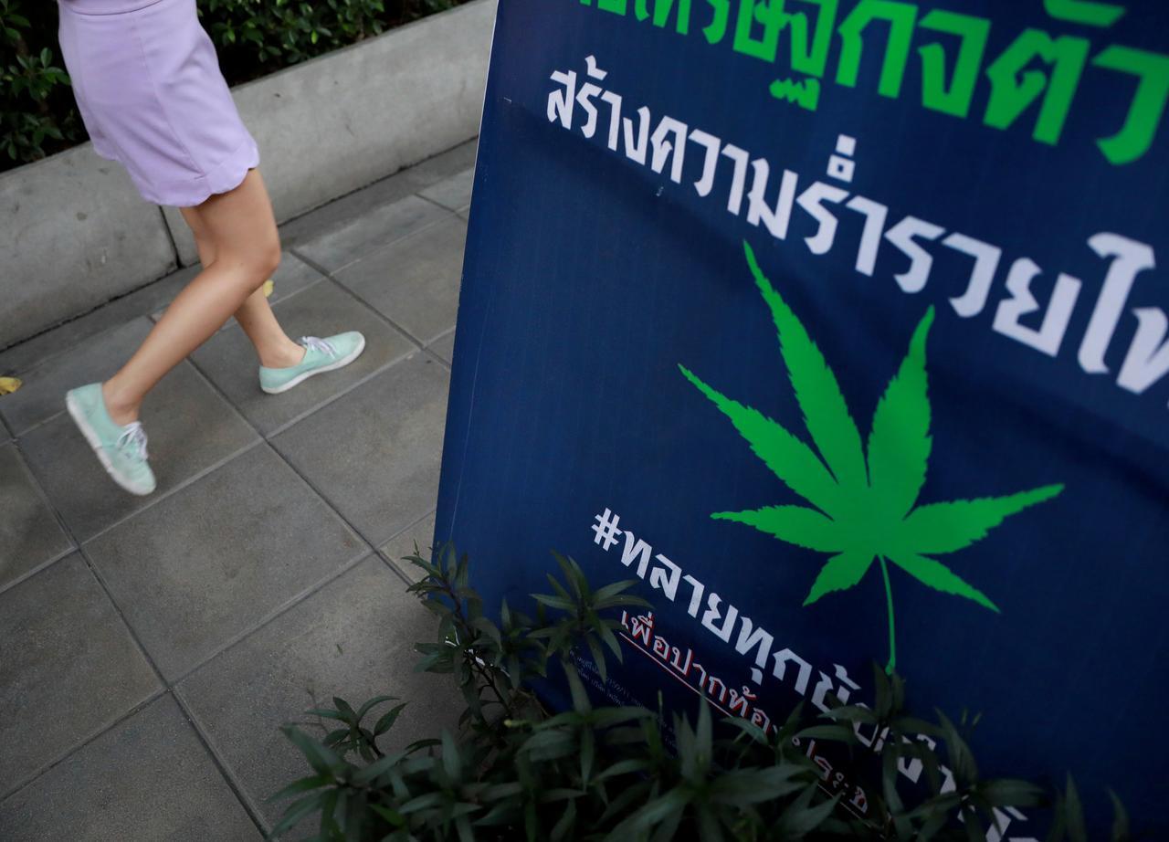 Thaiföld elkezdi leszállítani az első orvosi kannabisz készítményeit a helyi kórházakba | Magyar Orvosi Kannabisz Egyesület