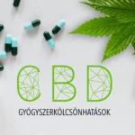 Amit a CBD gyógyszerkölcsönhatásokról tudni kell, röviden